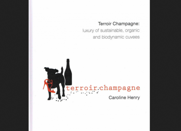 Terroir Champagne: luxury of sustainable, organic and biodynamic cuvees